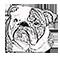 Cedar Lane School mascot