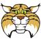 Logo: Stevens Forest Elementary School mascot
