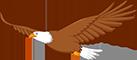 Logo: Talbott Springs Elementary School mascot